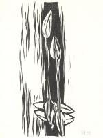 Holzschnitt 4