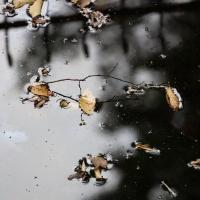 Wasserspiegel 2