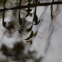 Wasserspiegel 3